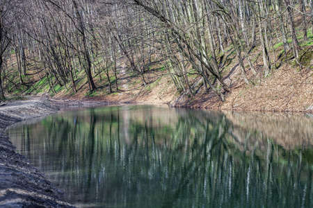 Spring landscape with lake in forest. Reflection of bare trees on water surface in woods Stok Fotoğraf
