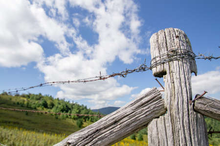 wire fence: Old Barbed Wire Fence