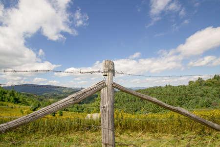 fenceline: Blue Ridge Fenceline