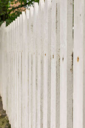picket fence: White Picket Fence