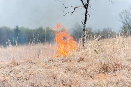 Prairie Grass Fire photo