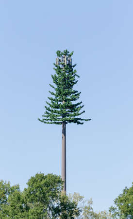 cell tower: tree