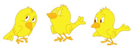 ludicrous: Three standing yellow chicken Illustration