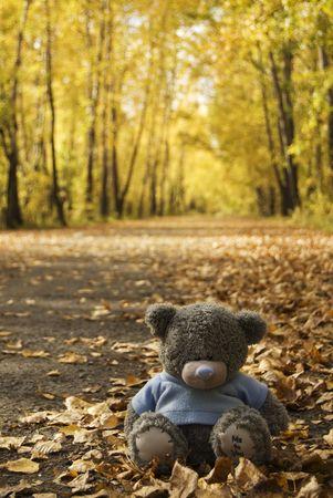 occhi tristi: Bear giocattolo in autunno  Archivio Fotografico