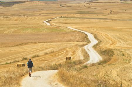 Young man is walking on the Cammino de Santiago de Compostela. Back view