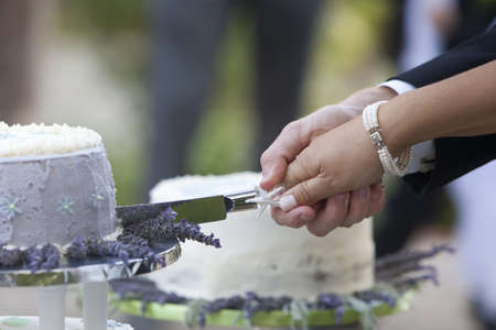 Bride and groom cutting wedding cake after getting married Standard-Bild