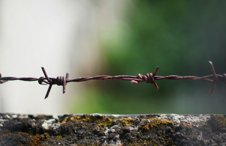 Rusted barbwire with background Stock Photo