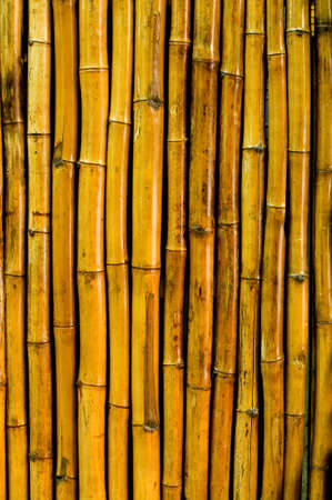Interesting weathered bamboo background material. Stock Photo