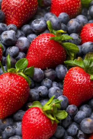 patterned: Blueberry, strawberry, raspberry and blackberry patterned background material.