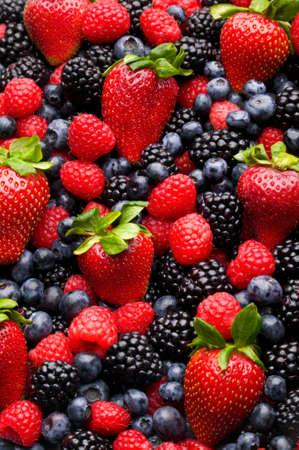 frutillas: Ar�ndano, fresa, frambuesa y mora con normalizaci�n material de antecedentes.  Foto de archivo