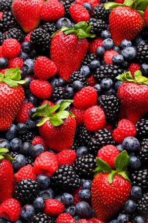 strawberries: Blueberry, strawberry, raspberry and blackberry patterned background material.