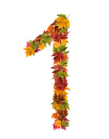 The number made from autumn maple tree leaves. photo
