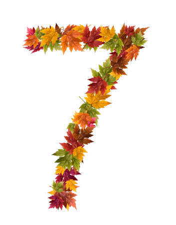 The number 7 made from autumn maple tree leaves.