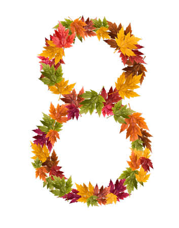 The number 8 made from autumn maple tree leaves.