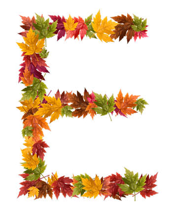 The letter E made from autumn maple tree leaves.