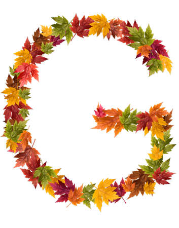 The letter G made from autumn maple tree leaves. Stock Photo
