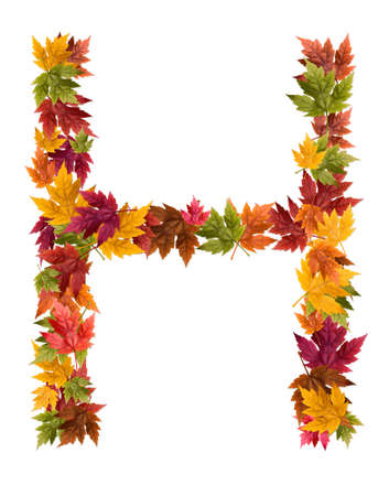 The letter H made from autumn maple tree leaves.