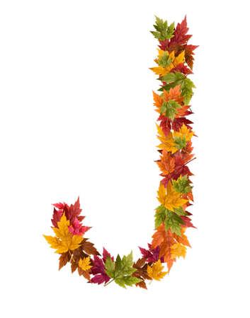 Der Buchstabe J ab Herbst Ahorn Blätter. Standard-Bild - 10859390