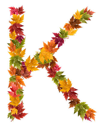 The letter K made from autumn maple tree leaves.