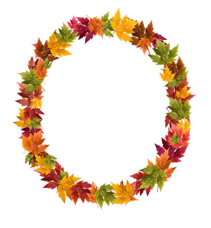 deciduous: The letter O made from autumn maple tree leaves.