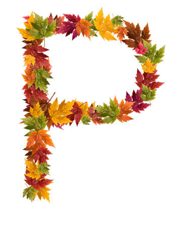 The letter P made from autumn maple tree leaves.
