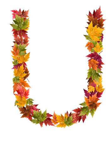 De letter U gemaakt van de herfst esdoorn bladeren.