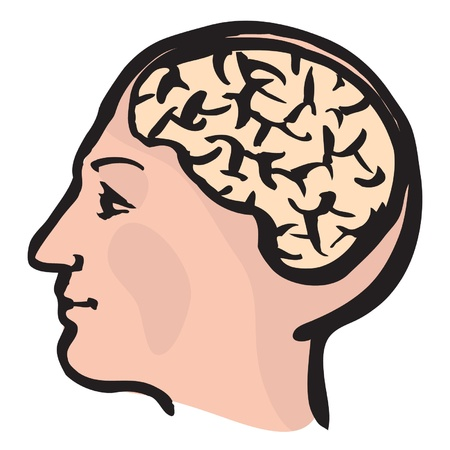 Cartoon brain vector Stock Vector - 15406529