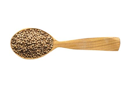 coriander seed for adding to food. spice in wooden spoon isolated on white. seasoning of delicious meal. 免版税图像