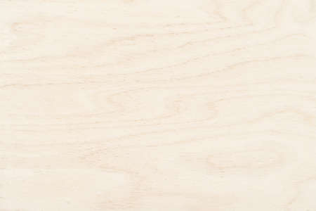 wood texture background. light boards with empty space