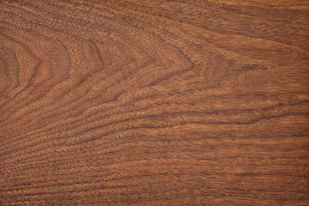 wood panel with natural print. vintage board surface, wooden background 免版税图像