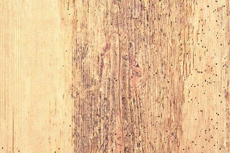 grunge wood texture natural color. light wood background