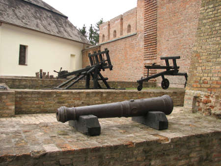 Old cannons in Lubart castle