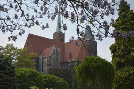 botanics: Church of the Holy Cross