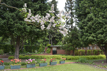 botanics: Spring at the botanical garden of Wroclaw