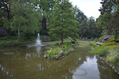 botanics: A lake in a botanical garden Wroclaw