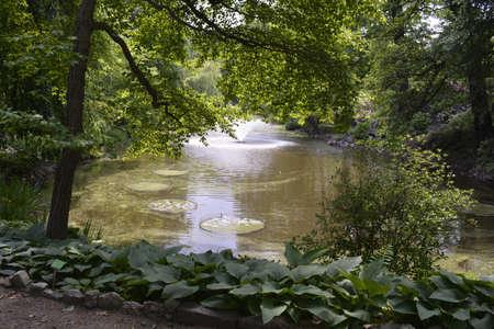 botanics: Fountain in Wroclaw botanical garden