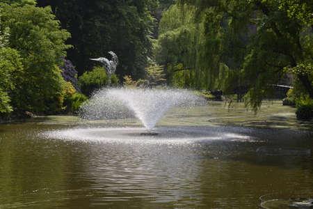 garden fountain: Fountain in Wroclaw botanical garden