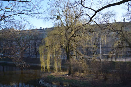 wroclaw: Trees nearby canal Wroclaw Stock Photo