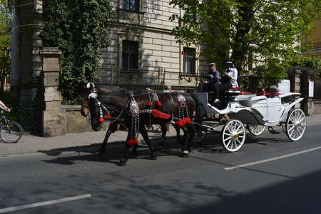 krakow: Horse carriage in Krakow Editorial