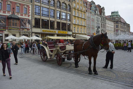 horse and carriage: Horse carriage in Wroclaw