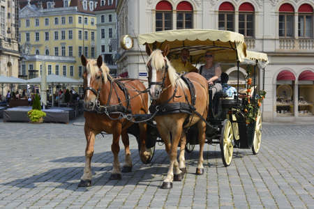 dresden: Horse carriage in Dresden Stock Photo