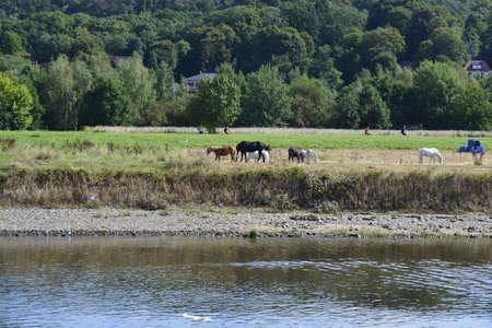 saxony: Rural landscape of Saxony