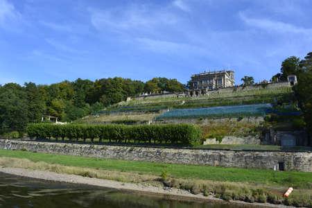 saxony: Vineyards in Saxony