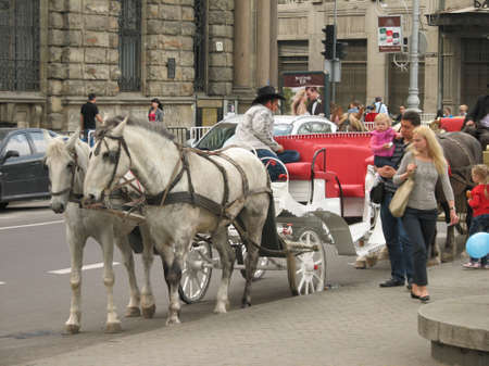 horse and carriage: Horse carriage in Lviv