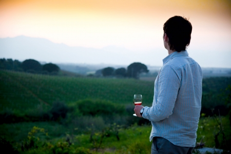 wineries: man enjoying wine and looking beautiful view of vineyard