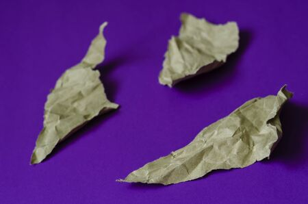 Lilac background with scraps of paper. Three torn crumpled pieces of paper. The basis for a variety of design tasks. Focus in the foreground. Full frame. Selective focus. 免版税图像