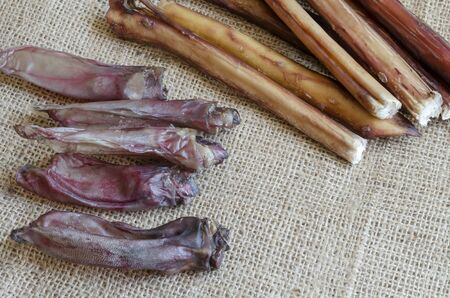 Set of natural chewing treats for dogs. Dried bully sticks and rabbit ears on burlap. Pet supplies. Copy space.