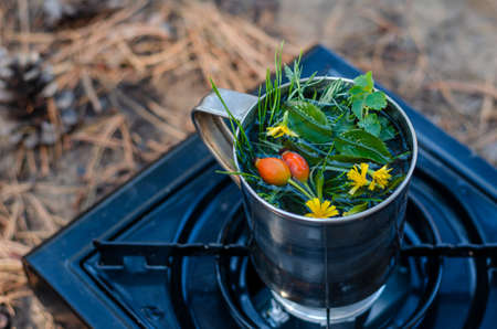A metal mug with herbal tea on a portable gas stove in the forest. Preparation of herbal tea from rose hips and various herbs. Hiking tourism concept. Selective focus.