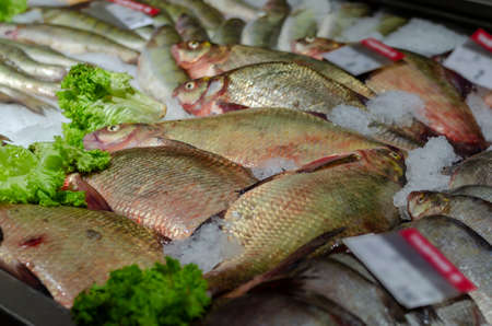 Whole fish carcasses are on the store counter. Raw fish bream in ice with defocused price tags. Fish and seafood trade. Selective focus.