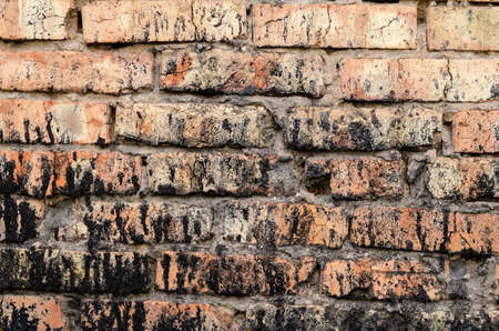 Red brick wall spattered with black resin. Multi-tasking background for various tasks. Without anyone.
